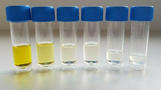 O grupo de investigação MicroART foi pioneiro no estudo do ozono aplicado no tratamento do pé ...