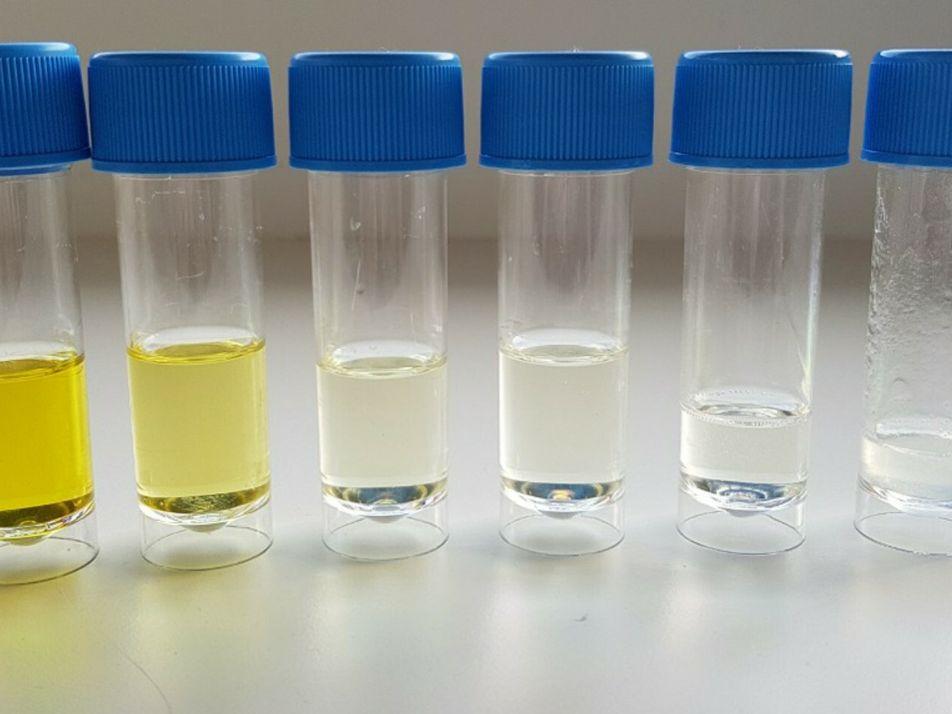 UTAD pioneira ao aplicar ozono para tratar infeções de pé diabético por bactérias multirresistentes
