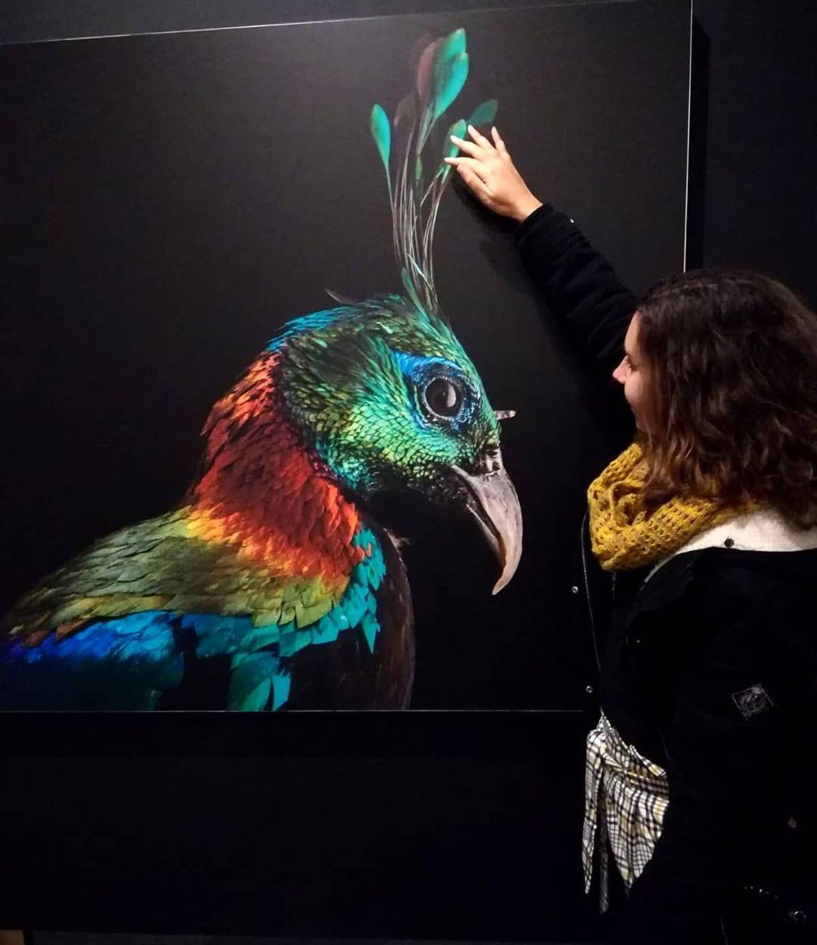 Imagem da participante @rute.d.pereira na exposição Photo Ark