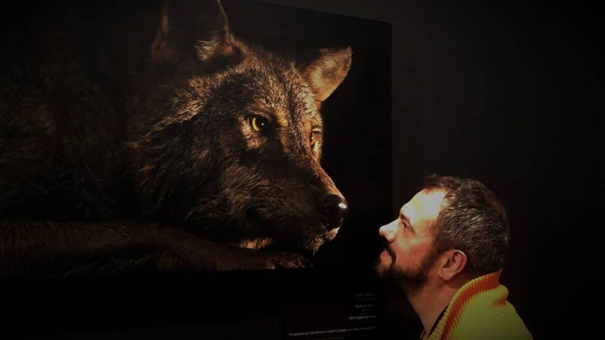 Imagem do participante @tico_e_caopanhia na exposição Photo Ark