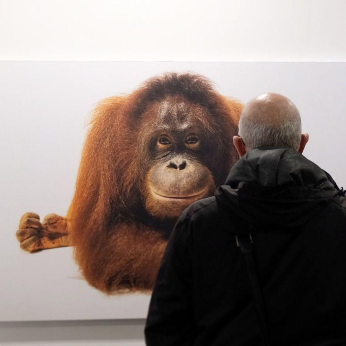 Imagem da participante @katagapitona exposição Photo Ark