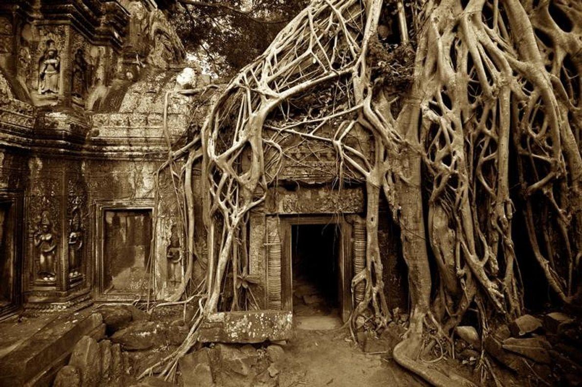 Templo Ta Prahm, Camboja