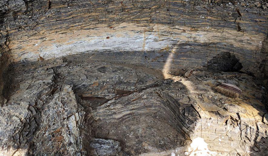 Uma secção transversal do depósito de Tanis mostra a estratigrafia por camadas de duas vagas de ...