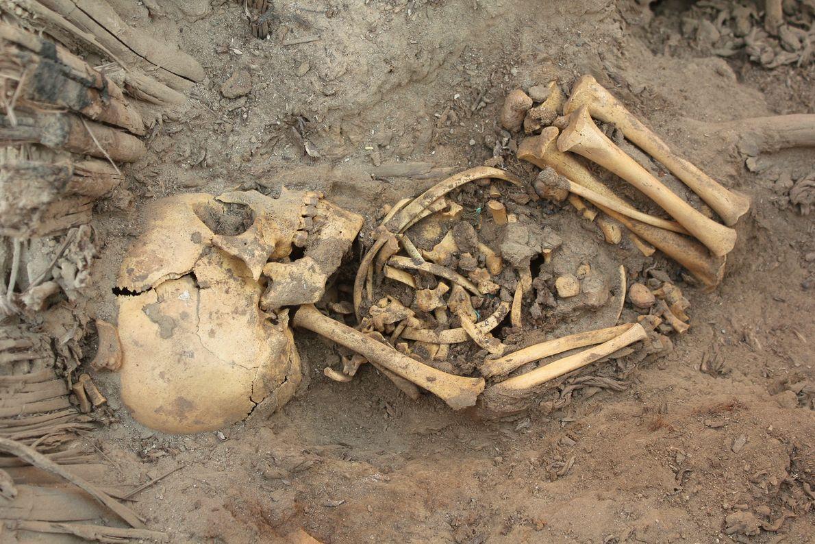 Veja a seguir: Túmulos Enormes Encontrados no Peru — 80 Corpos, Anel de Bebés