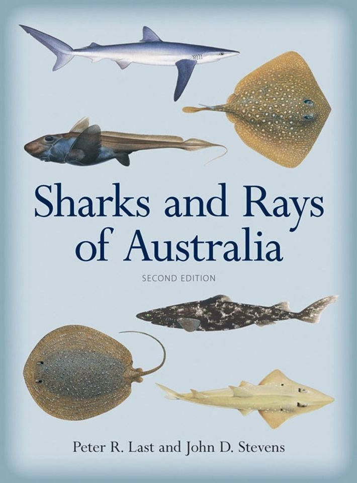 Capa do livro 'Sharks and Rays of Australia' ('Tubarões e Raias da Austrália')