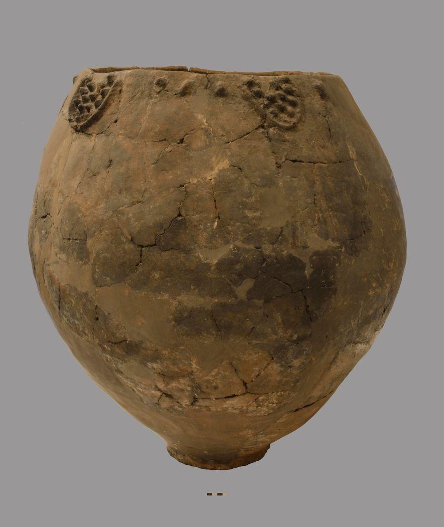 Os resíduos orgânicos recolhidos dos restos de vasos em cerâmica como este proporcionaram as provas mais ...