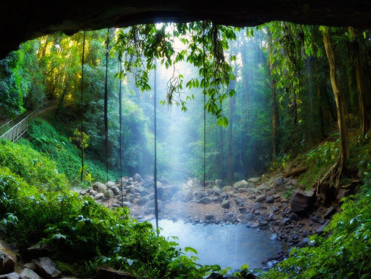 Cascatas Crystal Shower no Parque Nacional de Dorrigo, na Nova Gales do Sul