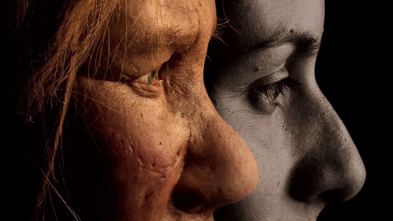 O Neandertal com o Tumor mais Antigo do Mundo