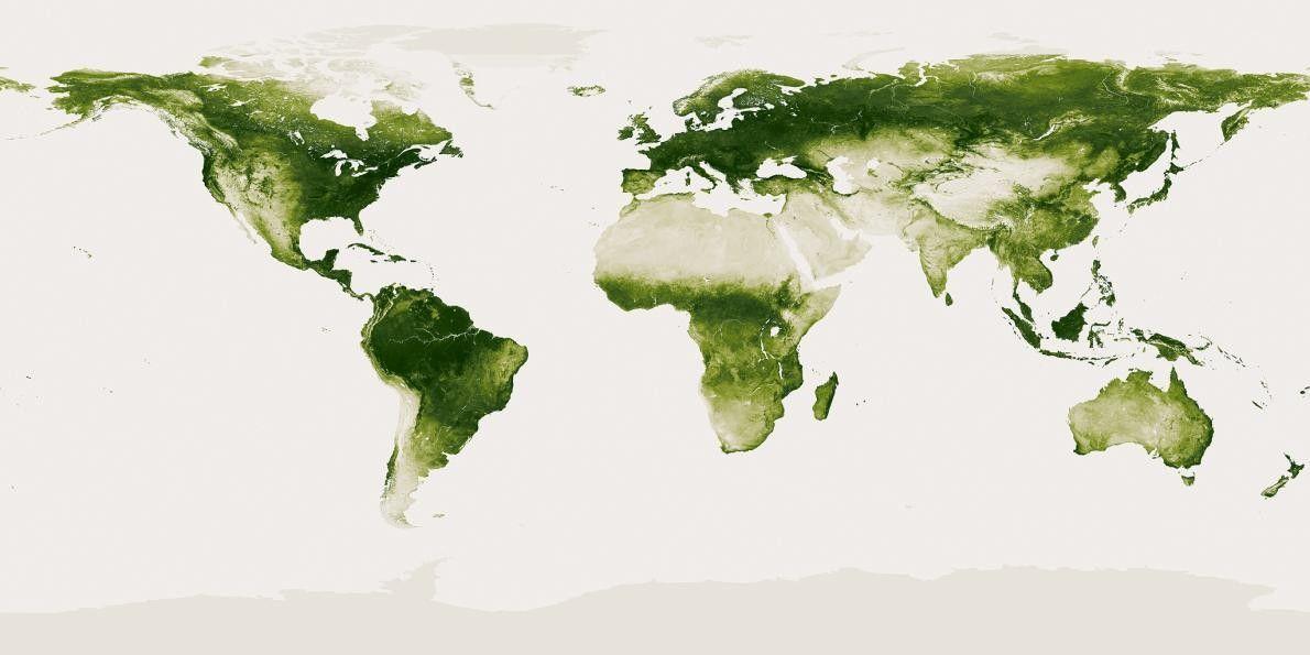 O Planeta Verde