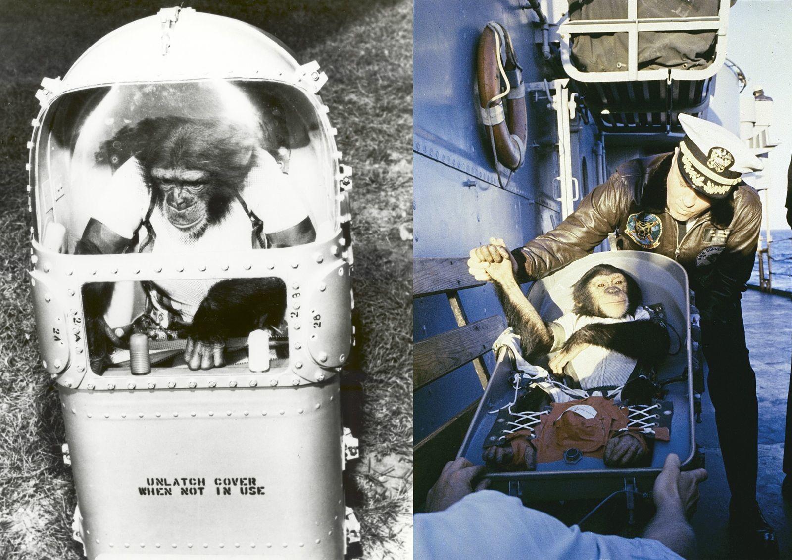 Esquerda: Ham na sua cápsula de suporte de vida. A cápsula – uma alternativa ao fato ...
