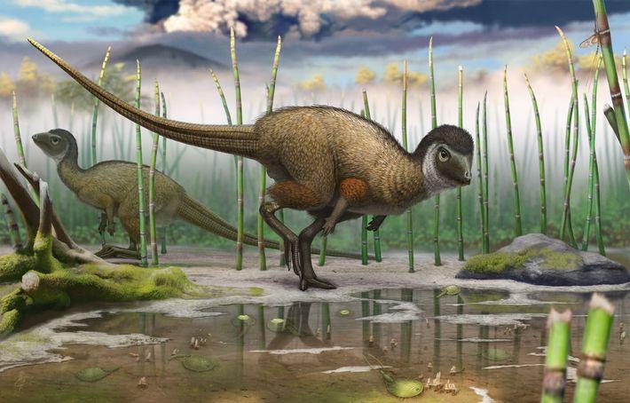 Esta ilustração de um Kulindadromeus zabaikalicus, um novo dinossauro com penas, mostra o seu ambiente natural.