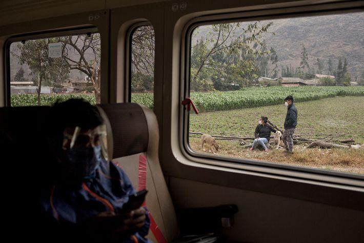 No outono de 2020, após uma pausa devido à pandemia COVID-19, as viagens de comboio entre ...
