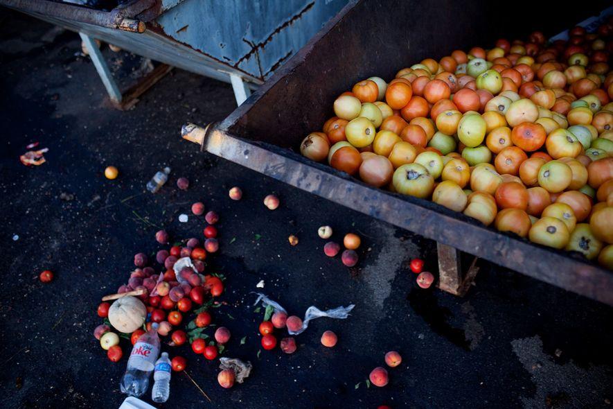 Os tomates não vendidos encher um contentor de lixo num mercado de agricultores em Asheville, Carolina ...