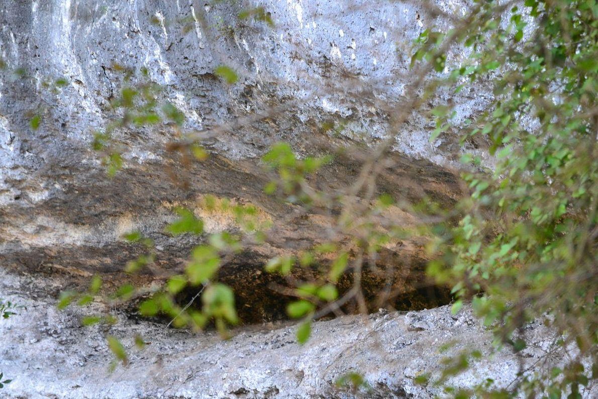 Entrada na rocha onde o fóssil do Menino de Lapedo foi encontrado