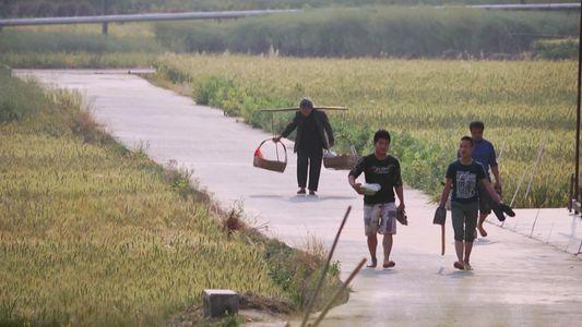 Veja o Trailer de 'China Revealed'