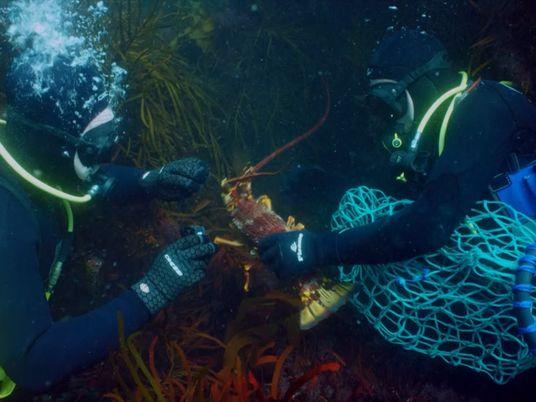Pescar na Tasmânia é Uma Atividade Extremamente Perigosa