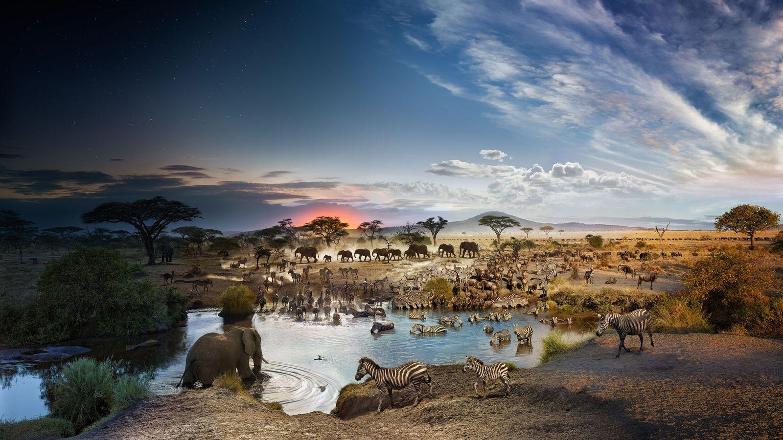 Parque Nacional de Seronera, em Serengeti, na Tanzânia.