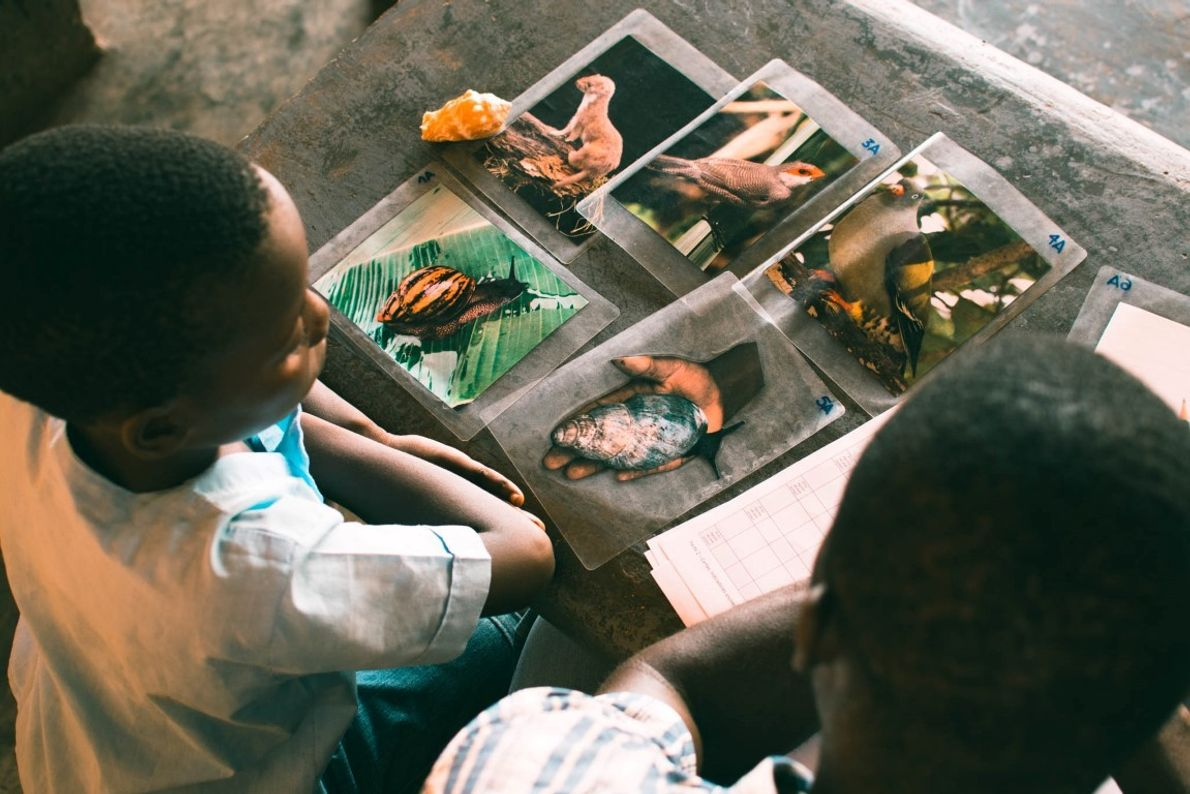 Antes da aula de educação ambiental, as crianças de 12 escolas, jogam a um jogo de ...