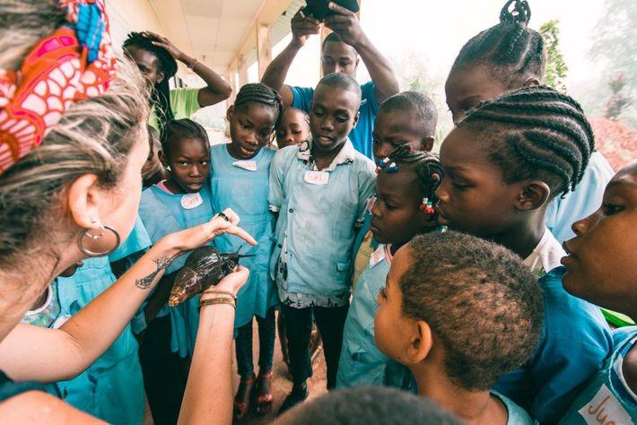 As crianças de duas escolas primárias conhecem ao vivo os Búzios-d'Obô que estão a ser criados ...