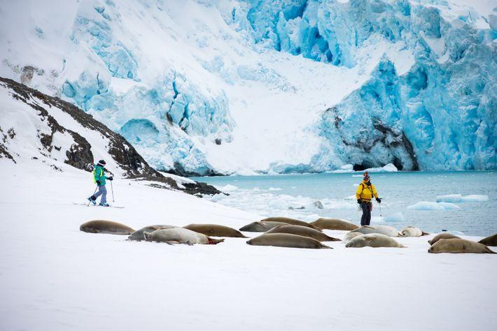 Fotografia de Mike e Lilliana Libecki a esquiar