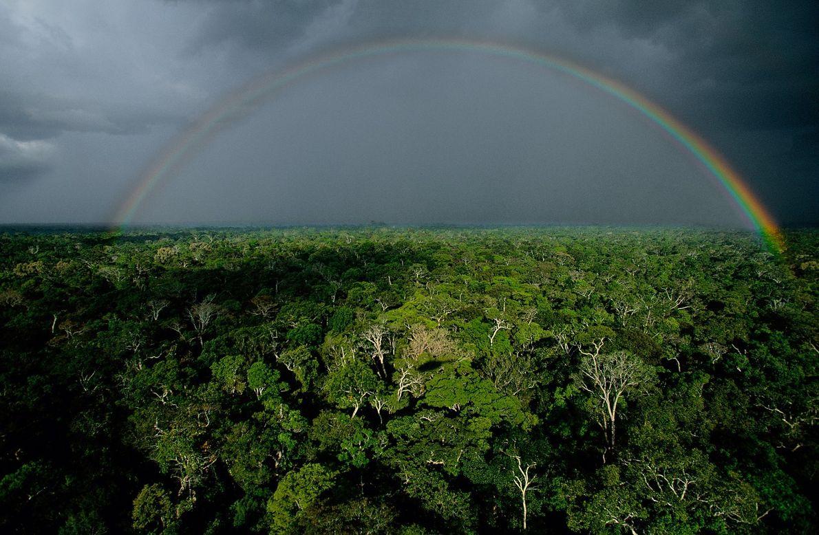 Fotografia aérea de Yann Arthus-Bertrand