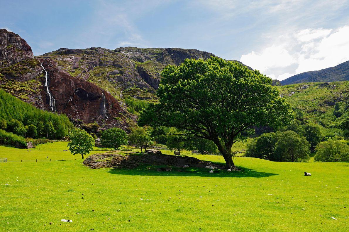 Imagem do parque Gleninchaquin na península de Beara perto de Kenmare, Co. Kerry, Irlanda