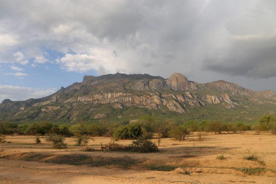 Equipa Portuguesa Descreve Espécies Desconhecidas das Montanhas do Sul de Angola