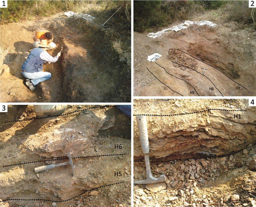 """Imagens dos trabalhos de escavação realizados em 2010, com anotações sobre o """"log estratigráfico"""" e respectiva ..."""