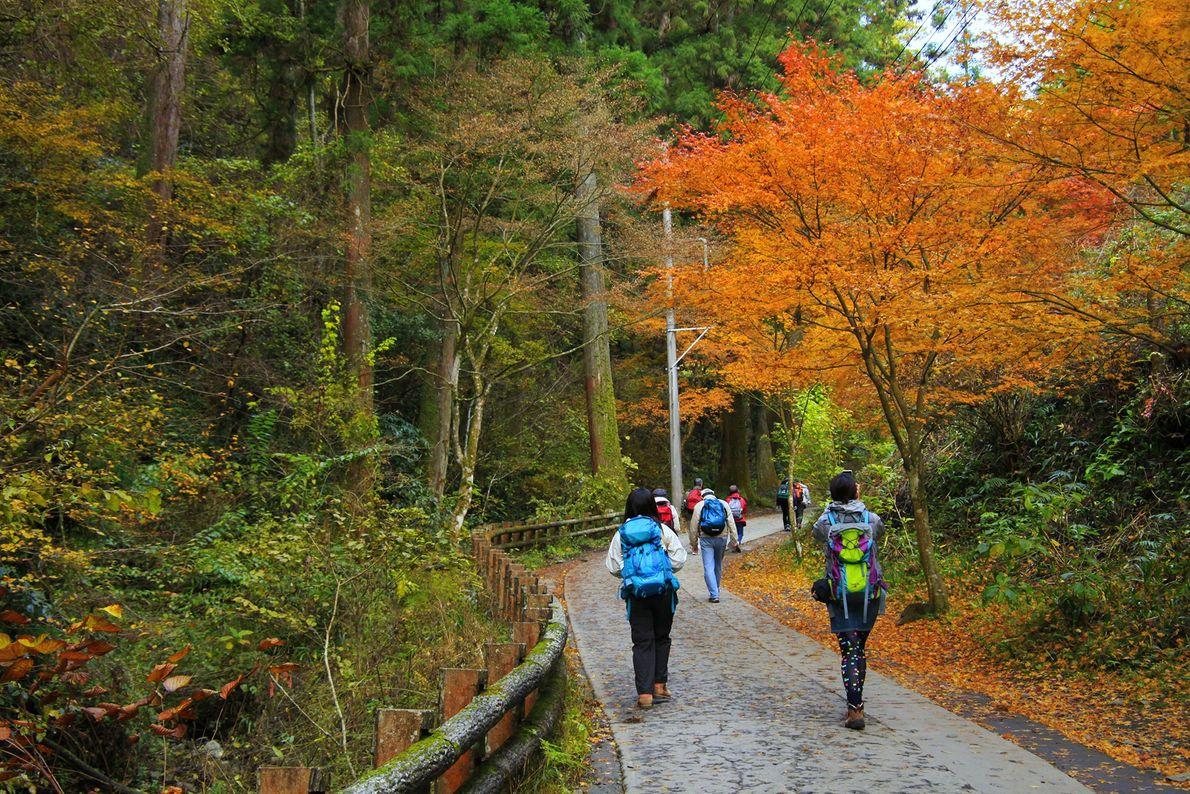 Imagem de caminhantes num percurso para o Monte Takao
