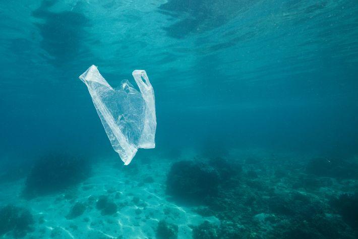 Saco de plastico no mar