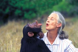 Jane Goodall National Geographic Summit