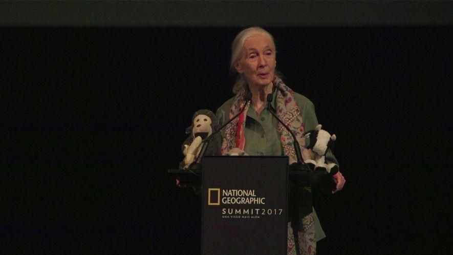 'Ideias para Mudar o Mundo' - Sessão Especial por Jane Goodall