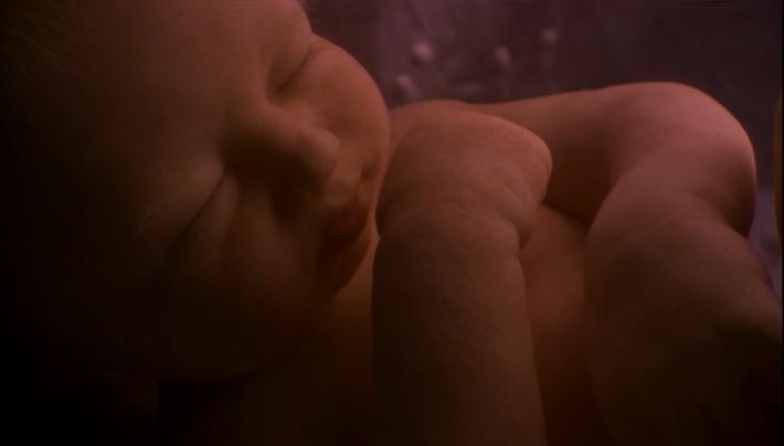 O bebé João