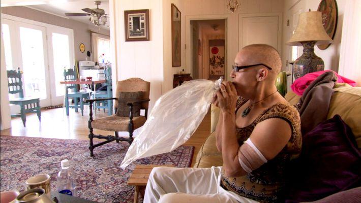 Os beneficios medicinais da Cannabis