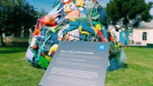 A instalação artística de Bordalo II está, desde 9 de abril, nos jardins do Museu do ...