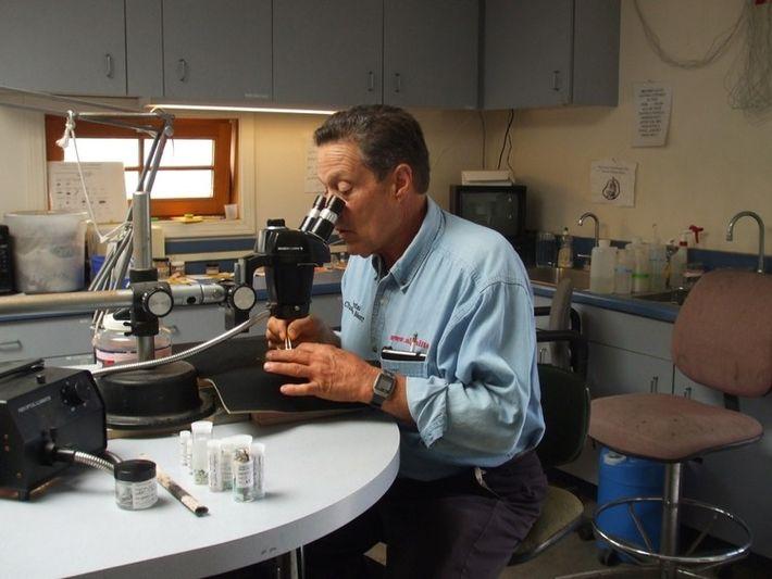 Imagem de Charles Moore no seu trabalho de investigação e monitorização do plástico nos oceanos.