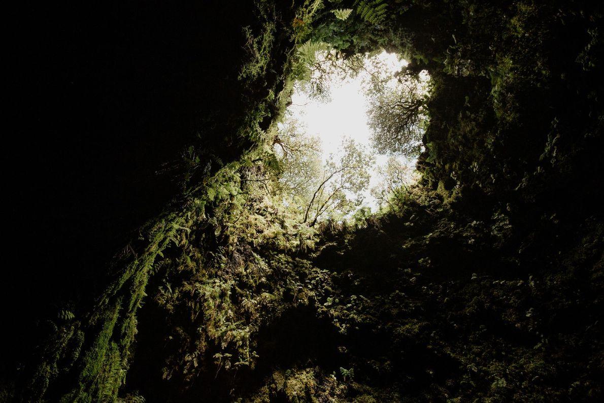 Fotografia do Algar do Carvão, Terceira