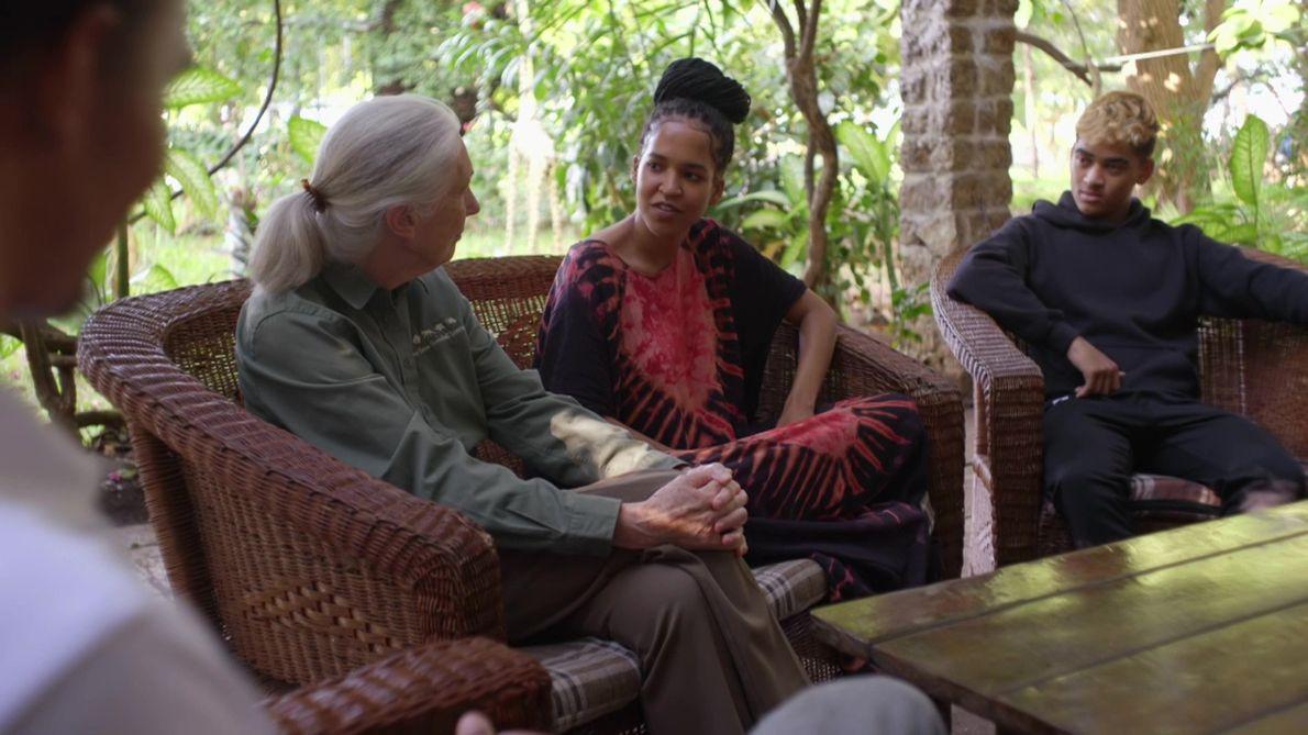 Jane Goodall: A Avó