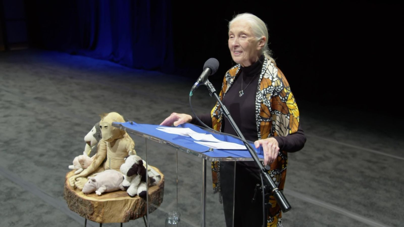 Palestra da Dra. Jane Goodall