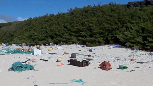 VÍDEO: 38 Milhões de Bocados de Lixo de Plástico Cobrem Esta Ilha Remota