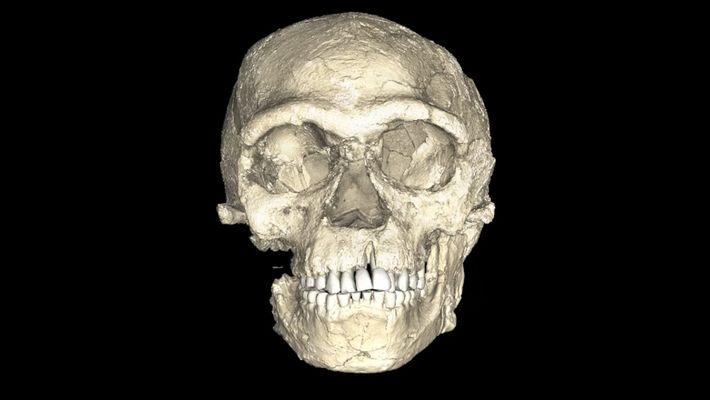 Serão Estes Os Fósseis Mais Antigos de Humanos 'Modernos'?