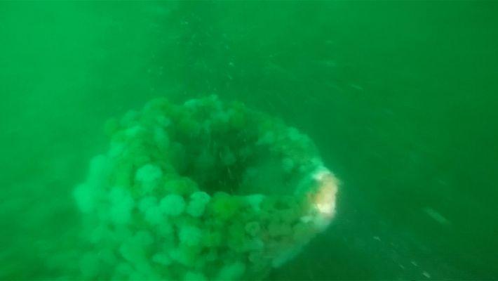 Veja Um Submarino da 1ª Guerra Mundial Descoberto na Costa da Bélgica