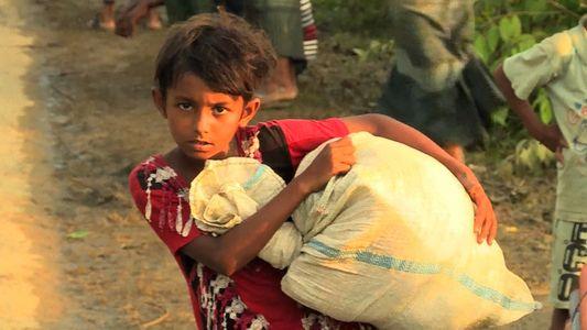 Vídeo Mostra a Realidade Perturbadora da Crise dos Refugiados Rohingya