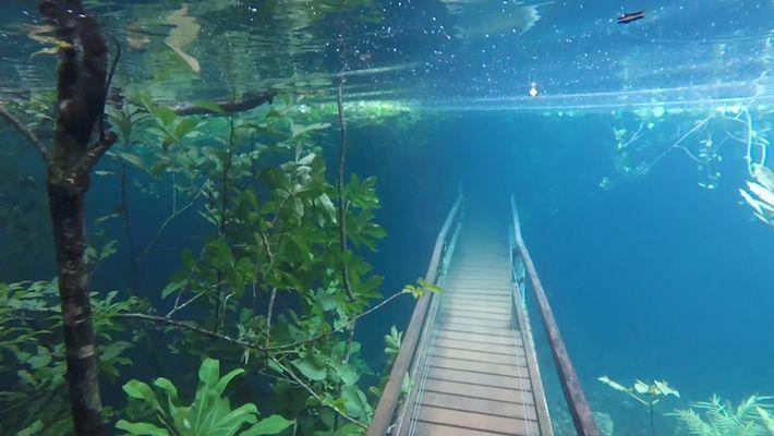 Chuvas Intensas Submergem Trilhos Pedestres Com Águas Cristalinas