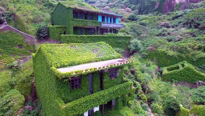 As Plantas Estão A Tomar Conta Desta Aldeia Piscatória Votada Ao Abandono