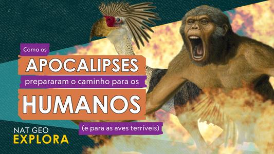 Como os Apocalipses Prepararam o Caminho Para os Humanos (e Para as Aves Terríveis)