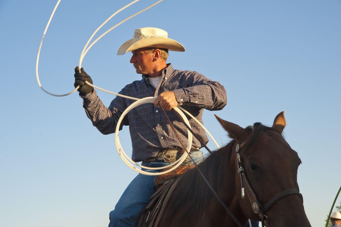 Um cavaleiro de rodeo na Feira Municipal de Marias 4-H.