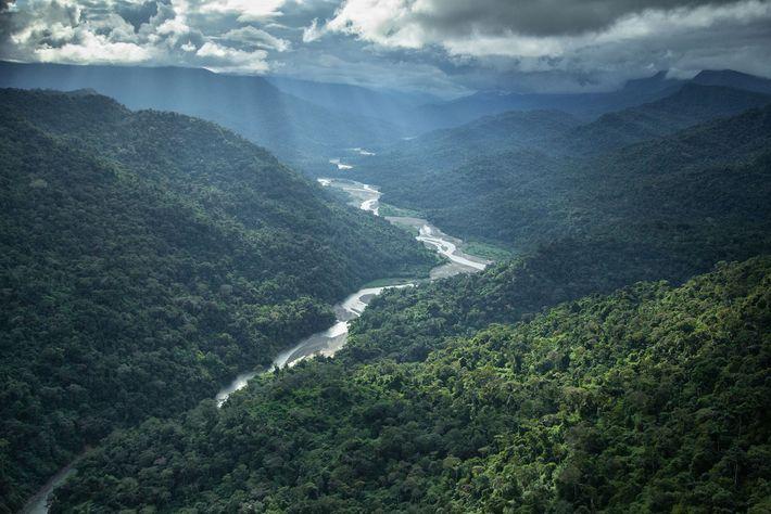 Parque Nacional de Manú, no Peru