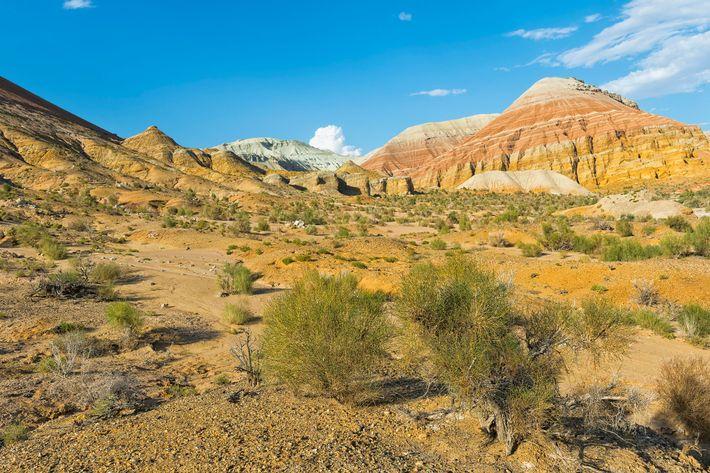 O Parque Nacional de Altyn-Emel, na região de Almaty, no Cazaquistão