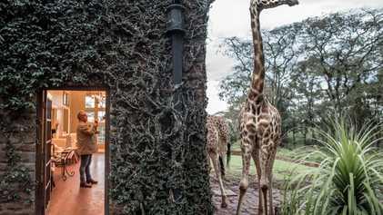 Turismo Sustentável: Como Contribuir?